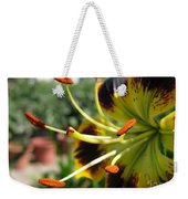 Asiatic Lily Named Black-eyed Cindy Weekender Tote Bag