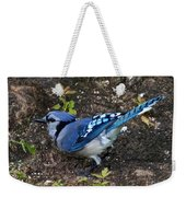 Blue-jay Weekender Tote Bag