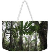 Bromeliad Bromeliaceae And Tree Fern Weekender Tote Bag by Cyril Ruoso