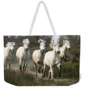 Camargue Horse Equus Caballus Group Weekender Tote Bag
