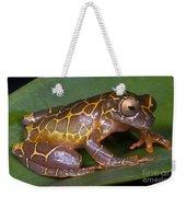 Clown Tree Frog Weekender Tote Bag by Dante Fenolio