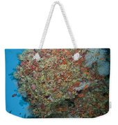 Colourful Reef Scene, Ari And Male Weekender Tote Bag