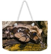 Crowned Tree Frog Weekender Tote Bag
