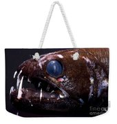 Dragonfish Weekender Tote Bag