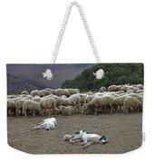 Flock Of Sheep Weekender Tote Bag