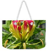 Gloriosa Named Rothschildiana Weekender Tote Bag
