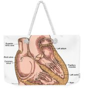 Illustration Of Heart Anatomy Weekender Tote Bag