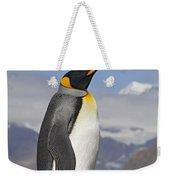 King Penguin Aptenodytes Patagonicus Weekender Tote Bag