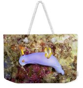 Nudibranch Feeding On Algae, Papua New Weekender Tote Bag