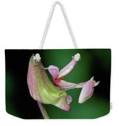 Orchid Mantis Hymenopus Coronatus Weekender Tote Bag