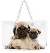 Pug And English Mastiff Puppies Weekender Tote Bag