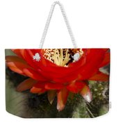 Red Cactus Flower Weekender Tote Bag
