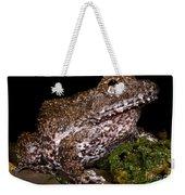 Rusty Robber Frog Weekender Tote Bag