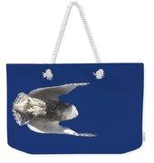 Snowy Owl In Flight Weekender Tote Bag