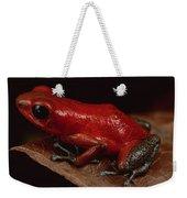 Strawberry Poison Dart Frog Dendrobates Weekender Tote Bag
