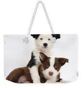 Border Collie Puppies Weekender Tote Bag