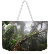 Bromeliad Bromeliaceae And Tree Fern Weekender Tote Bag