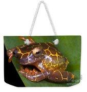 Clown Tree Frog Weekender Tote Bag