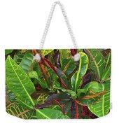 5- Croton Weekender Tote Bag