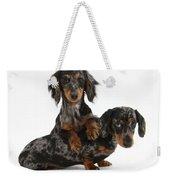 Dachshund Pups Weekender Tote Bag