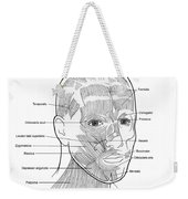 Illustration Of Facial Muscles Weekender Tote Bag