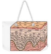 Illustration Of Stratified Squamous Weekender Tote Bag