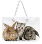 Kitten And Rabbits Weekender Tote Bag