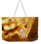 Light Micrograph Of Amoeba Catching Weekender Tote Bag by Eric V. Grave