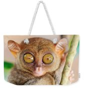 Phillipine Tarsier Weekender Tote Bag