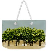 Photoperiodicity In Soybean Plants Weekender Tote Bag by Science Source