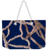 Pygmy Seahorse On Sea Fan, Papua New Weekender Tote Bag