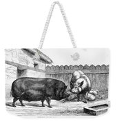 Swine, 19th Century Weekender Tote Bag