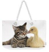 Tabby Kitten With Yellow Gosling Weekender Tote Bag