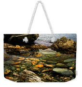Atlantic Coast In Newfoundland Weekender Tote Bag by Elena Elisseeva