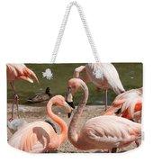 Flamingos Weekender Tote Bag