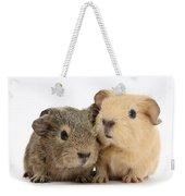 Guinea Pigs Weekender Tote Bag