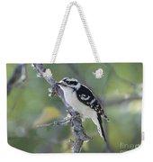 Woodpecker Weekender Tote Bag