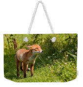 A British Red Fox Weekender Tote Bag