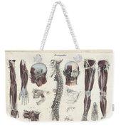Anatomie Methodique Illustrations Weekender Tote Bag