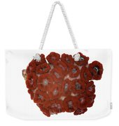 Fluorescent Coral In White Light Weekender Tote Bag