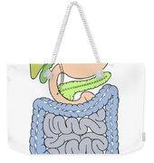 Illustration Of Abdomen Weekender Tote Bag
