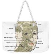 Illustration Of Facial Muscles Weekender Tote Bag