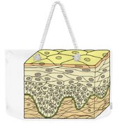 Illustration Of Stratified Squamous Weekender Tote Bag by Science Source