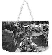 Zebras In Black And White Weekender Tote Bag