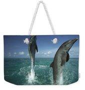 Bottlenose Dolphin Tursiops Truncatus Weekender Tote Bag