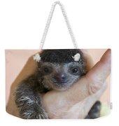 Brown-throated Three-toed Sloth Weekender Tote Bag