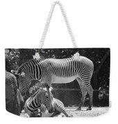 Zebras In Black And White Weekender Tote Bag