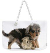 Puppy And Guinea Pig Weekender Tote Bag