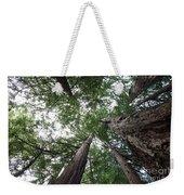 Redwoods Sequoia Sempervirens Weekender Tote Bag