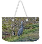 9- Sandhill Crane Weekender Tote Bag